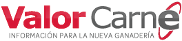 Valor Carne Logo