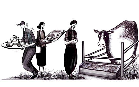 Producen carne a grano libre de antibióticos