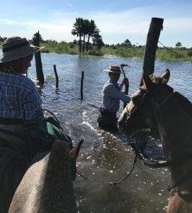 Manteniendo los alambrados bajo el agua.
