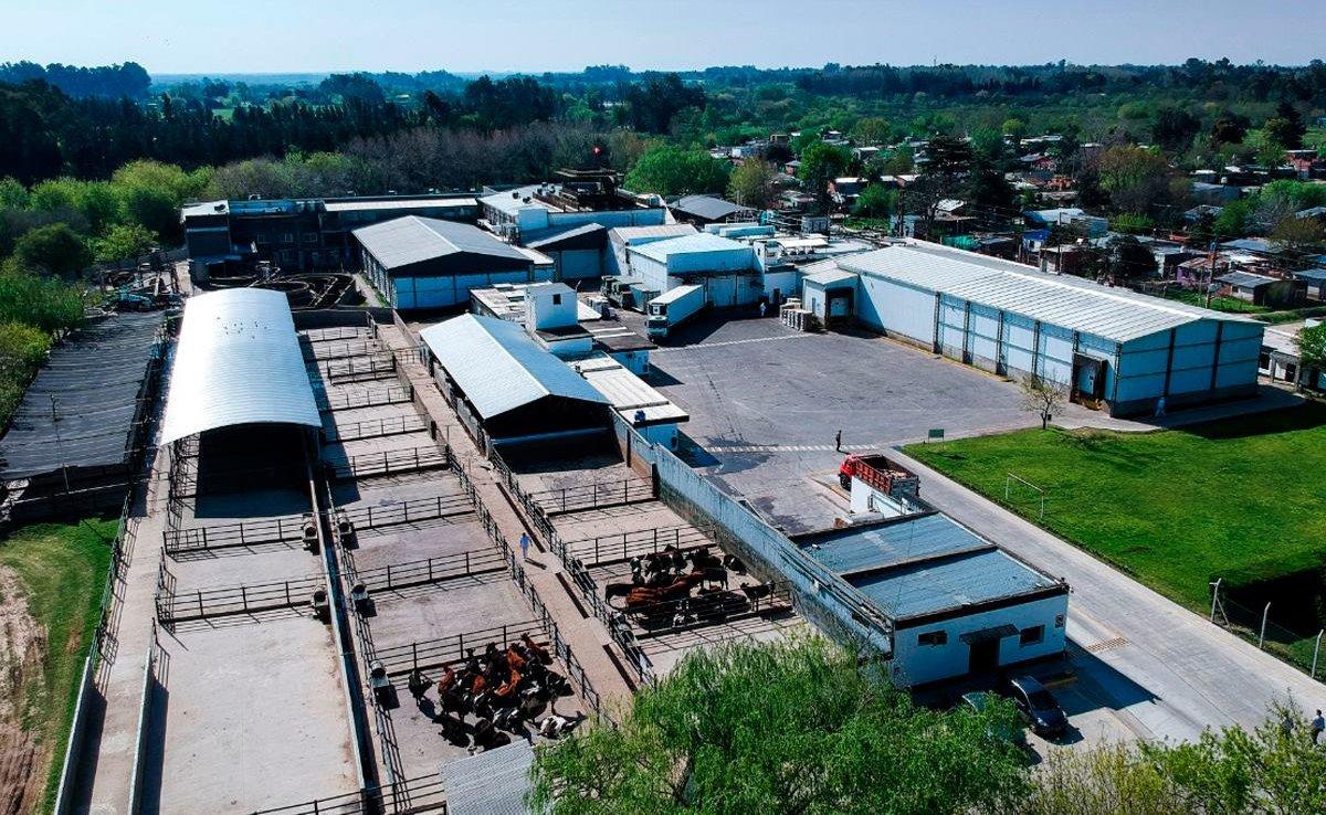 Las instalaciones de FRIMSA en Escobar.