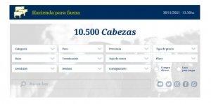 La plataforma de Rosgan Faena que comenzará a funcionar el 20 de mayo en rosgan.com.ar.