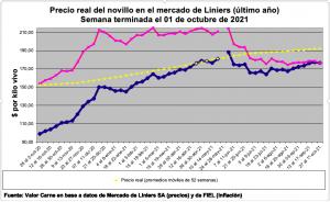 Rosa: precio real – Azul: precio corriente