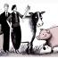 La consolidación del cerdo, clave para el bovino